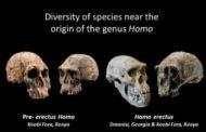 تکامل انسان و آب و هوا