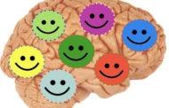 شش عادت یک مغز شاد