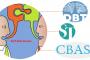 خودافشایی در رویکردهای رفتاردرمانی دیالکتیک (DBT)، طرحواره درمانی (ST) و سیستم رواندرمانی تجزیه و تحلیل شناختی-رفتاری (CBASP)