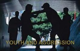 رفتارهای خشونت آمیز: دستهای از رفتارهای پرخطر در جوانان