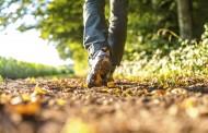 بزن بریم پیاده روی