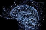 ارزیابی عصب روانشناختی چیست؟