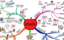 روانشناسی سلامت چیست و به چه حوزه های میپردازد؟