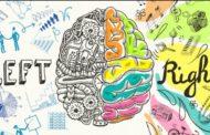 راست مغزی و چپ مغزی: افسانه یا واقعیت