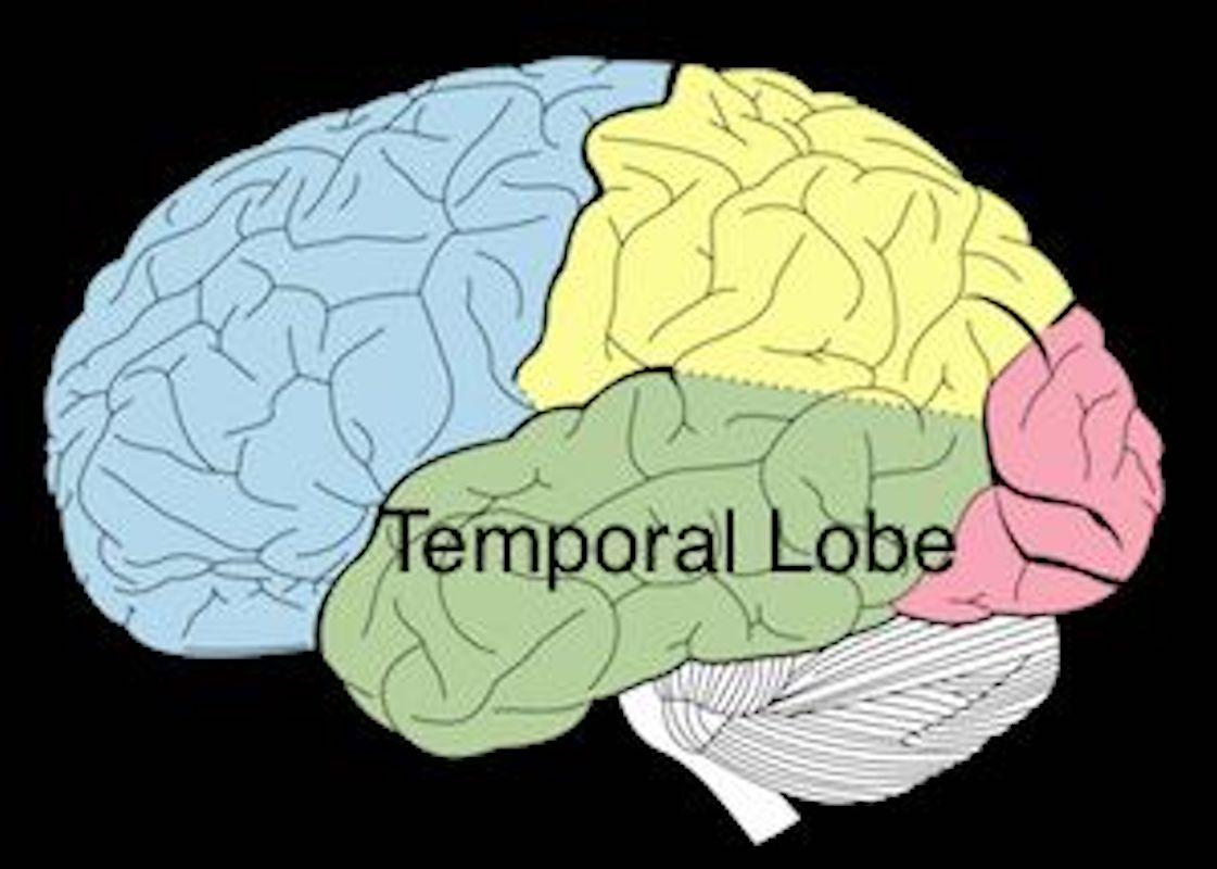 ارتباط تی اِل ای و دستگاه کناری مغز با دین و محتویات مذهبی عارفانه