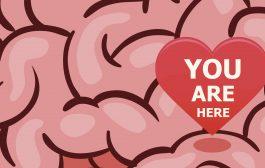 جایگاه عشق در مغز