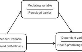 تعریف، کاربرد و تفاوت متغیرهای واسطهای و تعدیلکننده در پژوهشهای علوم رفتاری