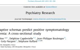 نشانهشناسی مثبت اسکیزوفرنی و طرحوارههای ناسازگار اولیه