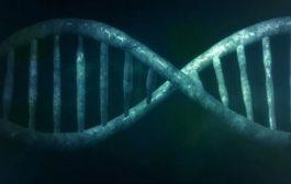 اختلال دو قطبی: کشف مکانیزم نشانههای خاص