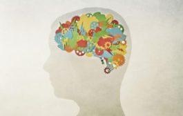 هوش های چندگانه:  نظریه هوارد گاردنر