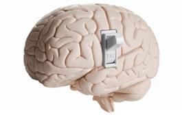 سوییچ خاموش و روشن کردن هوشیاری مغز