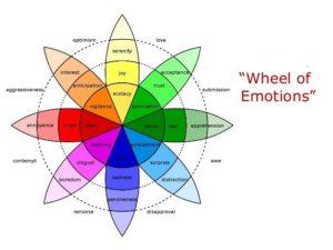 یک چرخه هیجان بسازید.