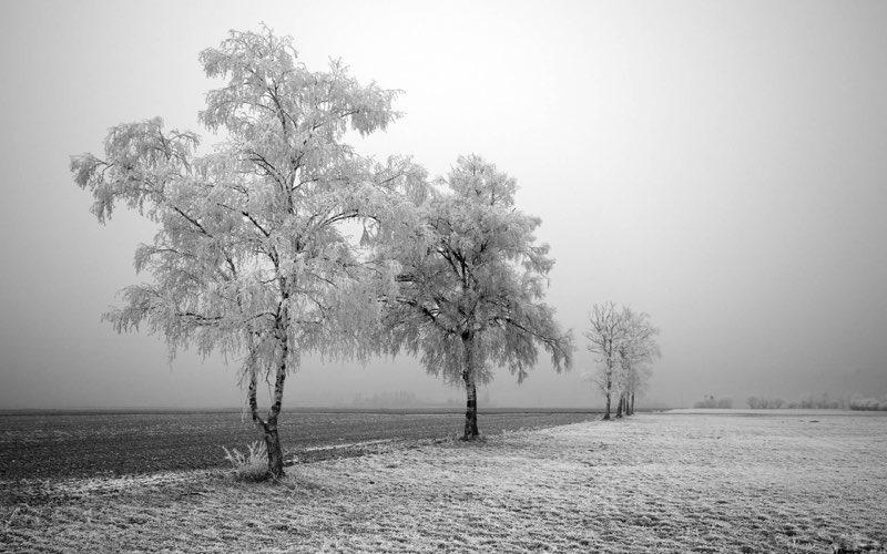 زمستان/مراقبه کوهستان