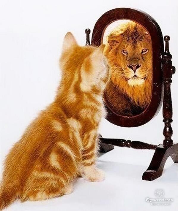 خودانگاره آرمانی: الگویی از آنچه فرد روانرنجور تصور میکند که هست، میتواند باشد، یا باید باشد