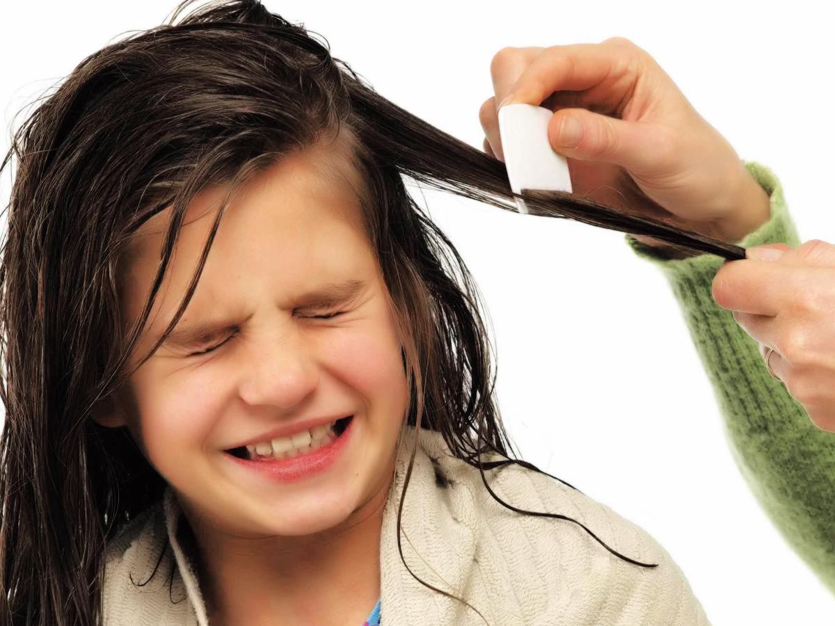 شانه کردن موی دختر کوچولوی  شیطانتان آن قدرها هم سخت نیست