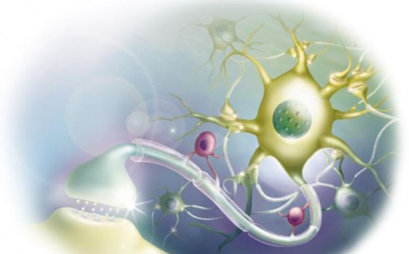 بازتوانی عصبی ـ شناختی برای وابستگی به مواد