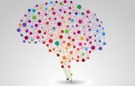 اختلال شخصیتی مرزی : یکی از شدیدترین اختلالات شخصیتی که در آن فعالیت قسمتی از مغز که به همدلی مرتبط است، تضعیف میشود.