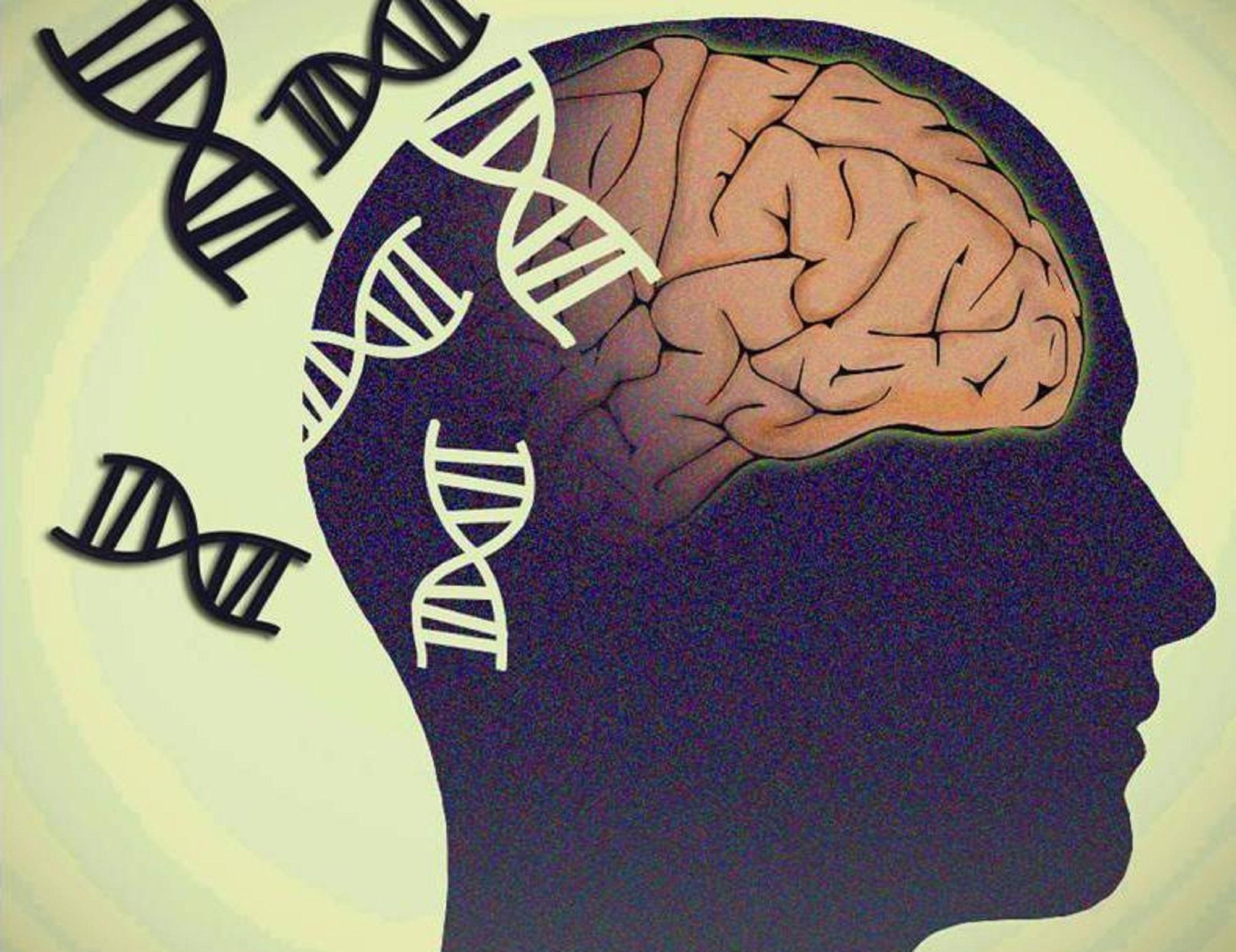 ژنتیک و اسکیزوفرنی : نقش ژنتیک در ابتلا به اسکیزوفرنی