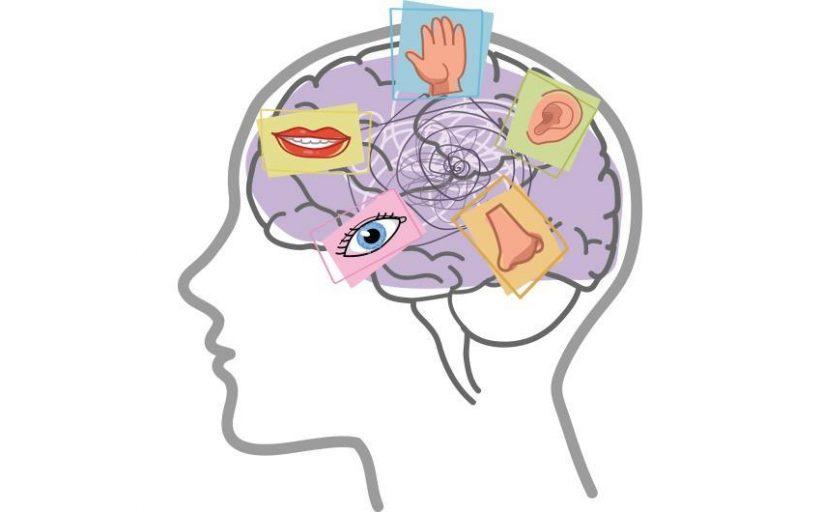 یکپارچگی حسی چیست و راهکارهای درمان آن کدام است؟